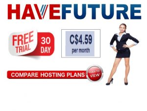 HAVEFUTURE.BIZ web hosting